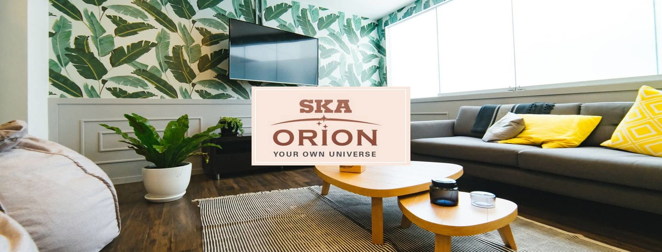 SKA-Orion